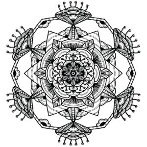 Japanese Floral Mandala
